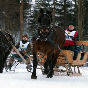 pferdeschlittenrennen_2.jpg
