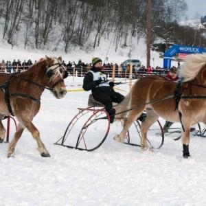 pferdeschlittenrennen_3.jpg