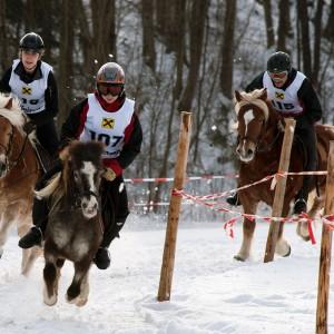 pferdeschlittenrennen_4.jpg