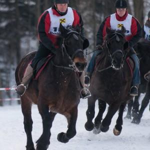 pferdeschlittenrennen_5.jpg