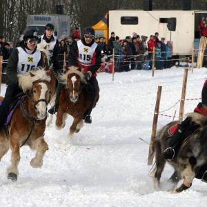 pferdeschlittenrennen_7.jpg
