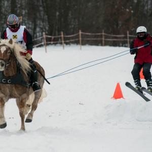 pferdeschlittenrennen_6.jpg